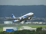 おっつんさんが、仙台空港で撮影した全日空 737-881の航空フォト(写真)