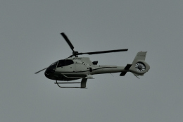 NFファンさんが、厚木飛行場で撮影したオートパンサー EC130B4の航空フォト(飛行機 写真・画像)