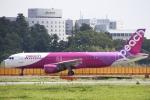 ちゅういちさんが、成田国際空港で撮影したピーチ A320-214の航空フォト(写真)