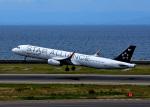 bluesky05さんが、中部国際空港で撮影したアシアナ航空 A321-231の航空フォト(写真)