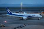 らむえあたーびんさんが、羽田空港で撮影した全日空 787-8 Dreamlinerの航空フォト(写真)