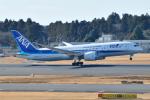 panchiさんが、成田国際空港で撮影した全日空 787-8 Dreamlinerの航空フォト(写真)
