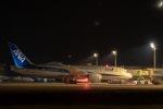 野菜ジュースさんが、米子空港で撮影した全日空 787-8 Dreamlinerの航空フォト(写真)