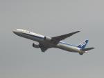 なまくら はげるさんが、羽田空港で撮影した全日空 777-381の航空フォト(写真)