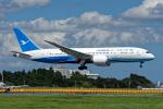 コージーさんが、成田国際空港で撮影した厦門航空 787-8 Dreamlinerの航空フォト(写真)