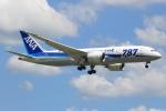 キイロイトリさんが、福岡空港で撮影した全日空 787-8 Dreamlinerの航空フォト(写真)