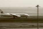 恵二さんが、羽田空港で撮影した日本航空 787-8 Dreamlinerの航空フォト(写真)