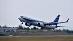 オキシドールさんが、広島空港で撮影したニュージェン・エアウェイズ 737-8Q8の航空フォト(写真)