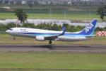 プルシアンブルーさんが、仙台空港で撮影した全日空 737-881の航空フォト(写真)