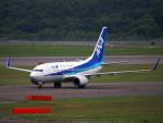 むらさめさんが、新千歳空港で撮影した全日空 737-781の航空フォト(写真)