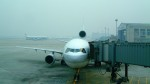 westtowerさんが、北京首都国際空港で撮影した日本航空 DC-10-40Iの航空フォト(写真)