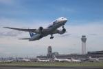 ja8977さんが、羽田空港で撮影した全日空 787-8 Dreamlinerの航空フォト(写真)