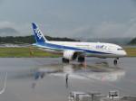 JA655Jさんが、広島空港で撮影した全日空 787-8 Dreamlinerの航空フォト(写真)