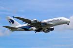 かずかずさんが、成田国際空港で撮影したマレーシア航空 A380-841の航空フォト(写真)