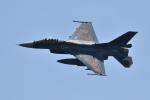 ばとさんが、岩国空港で撮影した航空自衛隊 F-2Aの航空フォト(写真)