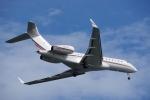 JA8037さんが、羽田空港で撮影したネットジェッツ・エイビエーション BD-700-1A10 Global 6000の航空フォト(写真)