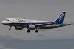 木人さんが、成田国際空港で撮影した全日空 A320-271Nの航空フォト(写真)