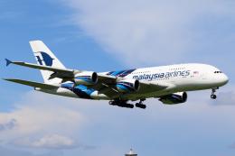 せぷてんばーさんが、成田国際空港で撮影したマレーシア航空 A380-841の航空フォト(写真)
