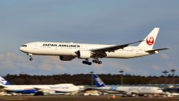 FlyingMonkeyさんが、成田国際空港で撮影した日本航空 777-346/ERの航空フォト(飛行機 写真・画像)