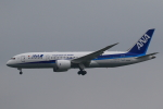 ★azusa★さんが、成田国際空港で撮影した全日空 787-8 Dreamlinerの航空フォト(写真)