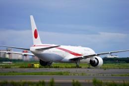 hidetsuguさんが、新千歳空港で撮影した航空自衛隊 777-3SB/ERの航空フォト(写真)