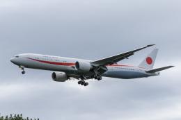 syu〜さんが、新千歳空港で撮影した航空自衛隊 777-3SB/ERの航空フォト(写真)