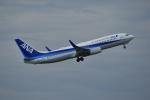 よしポンさんが、伊丹空港で撮影した全日空 737-881の航空フォト(写真)