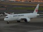 さゆりんごさんが、羽田空港で撮影した日本航空 787-8 Dreamlinerの航空フォト(写真)