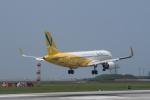 delawakaさんが、那覇空港で撮影したバニラエア A320-214の航空フォト(写真)