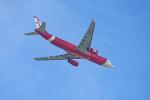 コージーさんが、成田国際空港で撮影したタイ・エアアジア・エックス A330-343Eの航空フォト(写真)