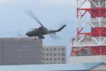 totsu19さんが、札幌飛行場で撮影した陸上自衛隊 AH-1Sの航空フォト(写真)