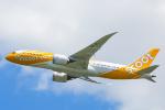 SGR RT 改さんが、成田国際空港で撮影したスクート 787-8 Dreamlinerの航空フォト(写真)