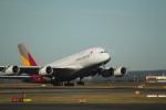 職業旅人さんが、シドニー国際空港で撮影したアシアナ航空 A380-841の航空フォト(写真)