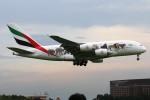 青春の1ページさんが、成田国際空港で撮影したエミレーツ航空 A380-861の航空フォト(写真)