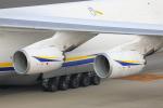 じゃりんこさんが、中部国際空港で撮影したアントノフ・エアラインズ An-124-100M Ruslanの航空フォト(写真)
