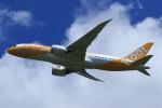 Espace77さんが、成田国際空港で撮影したスクート 787-8 Dreamlinerの航空フォト(写真)