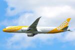 SGR RT 改さんが、成田国際空港で撮影したスクート 787-9の航空フォト(写真)