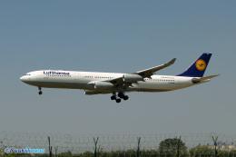 YuukiToonoさんが、青島流亭国際空港で撮影したルフトハンザドイツ航空 A340-313Xの航空フォト(写真)
