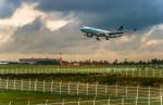 Cygnus00さんが、新千歳空港で撮影したキャセイパシフィック航空 A330-342の航空フォト(写真)