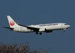 garrettさんが、成田国際空港で撮影した日本航空 737-846の航空フォト(写真)