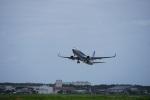 かろすけさんが、宮崎空港で撮影した全日空 737-881の航空フォト(写真)