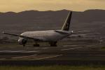 Alice Photoさんが、伊丹空港で撮影した全日空 777-281の航空フォト(写真)