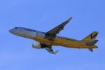 やまさんが、関西国際空港で撮影したバニラエア A320-214の航空フォト(写真)