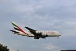ハム太郎。さんが、成田国際空港で撮影したエミレーツ航空 A380-861の航空フォト(写真)