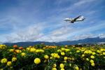 あるくまさんが、松本空港で撮影したジェイ・エア ERJ-170-100 (ERJ-170STD)の航空フォト(飛行機 写真・画像)