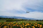 あるくまさんが、松本空港で撮影したフジドリームエアラインズ ERJ-170-100 (ERJ-170STD)の航空フォト(飛行機 写真・画像)