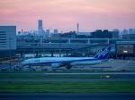チャッピー・シミズさんが、羽田空港で撮影した全日空 777-381/ERの航空フォト(写真)