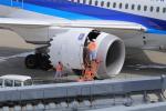 yoshi_350さんが、羽田空港で撮影した全日空 787-8 Dreamlinerの航空フォト(写真)