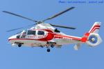いおりさんが、福岡空港で撮影した福岡市消防局消防航空隊 AS365N2 Dauphin 2の航空フォト(写真)