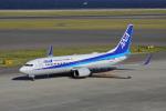 じゃりんこさんが、中部国際空港で撮影した全日空 737-881の航空フォト(写真)